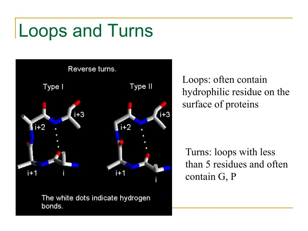 Loops and Turns