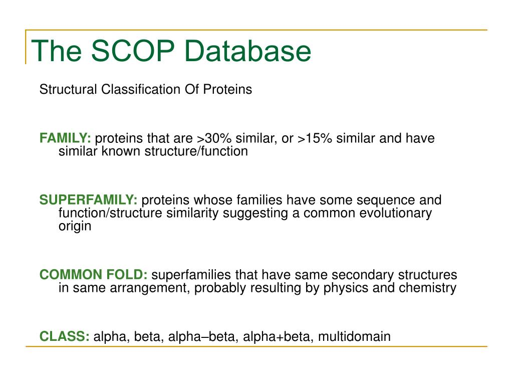The SCOP Database
