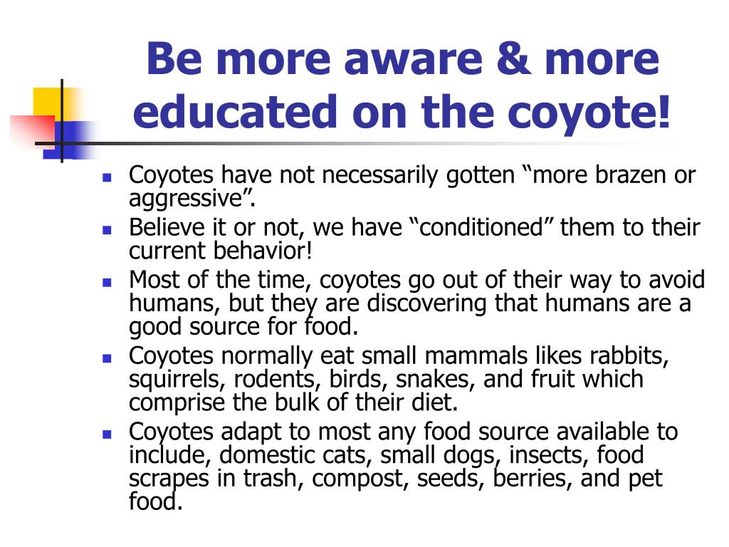 Be more aware & more educated on the coyote!