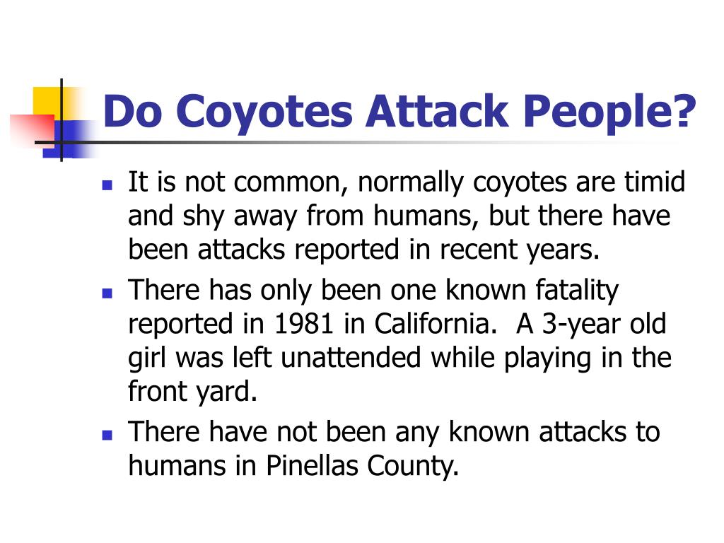 Do Coyotes Attack People?