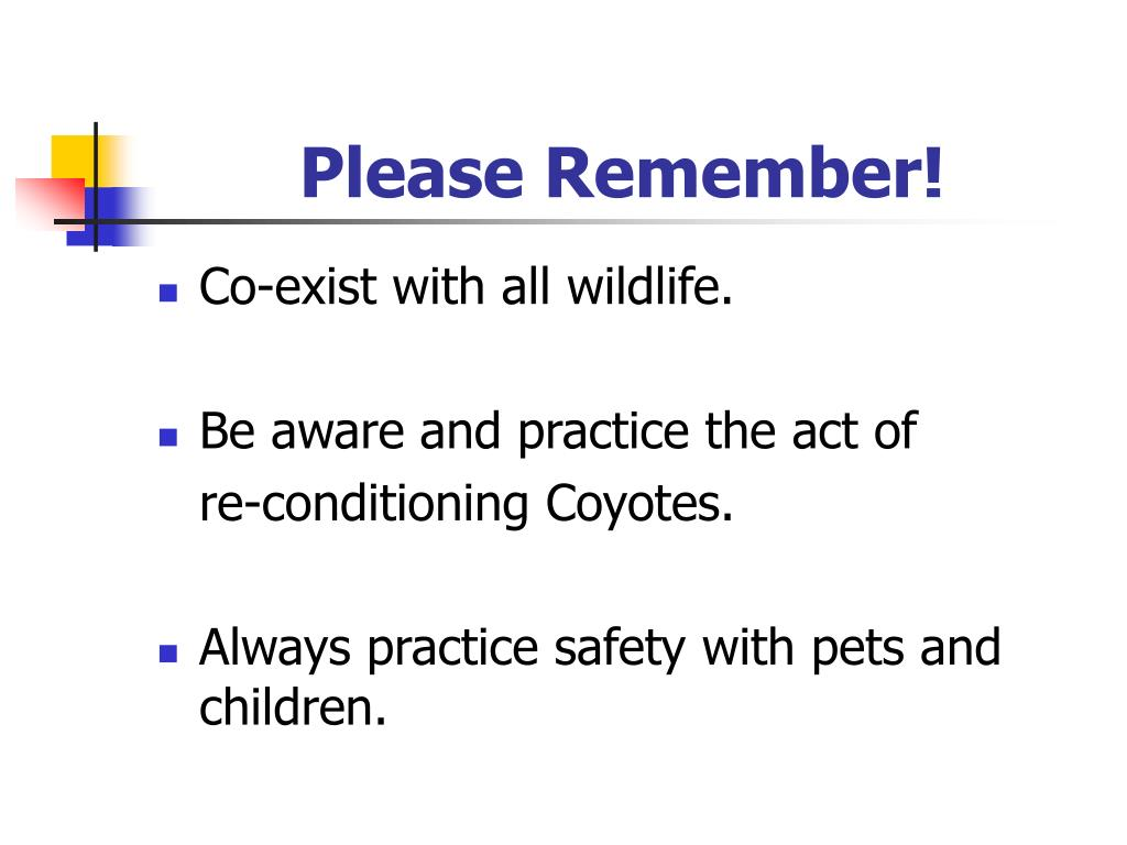 Please Remember!
