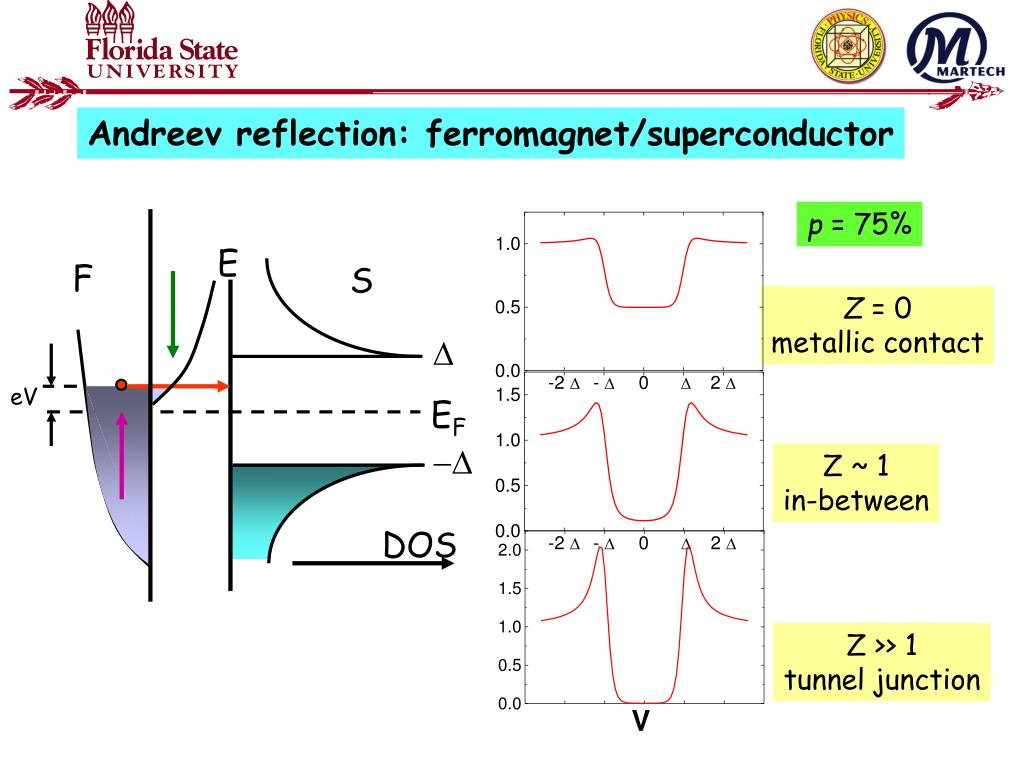 Andreev reflection: ferromagnet/superconductor