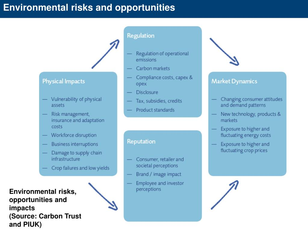 Environmental risks and opportunities