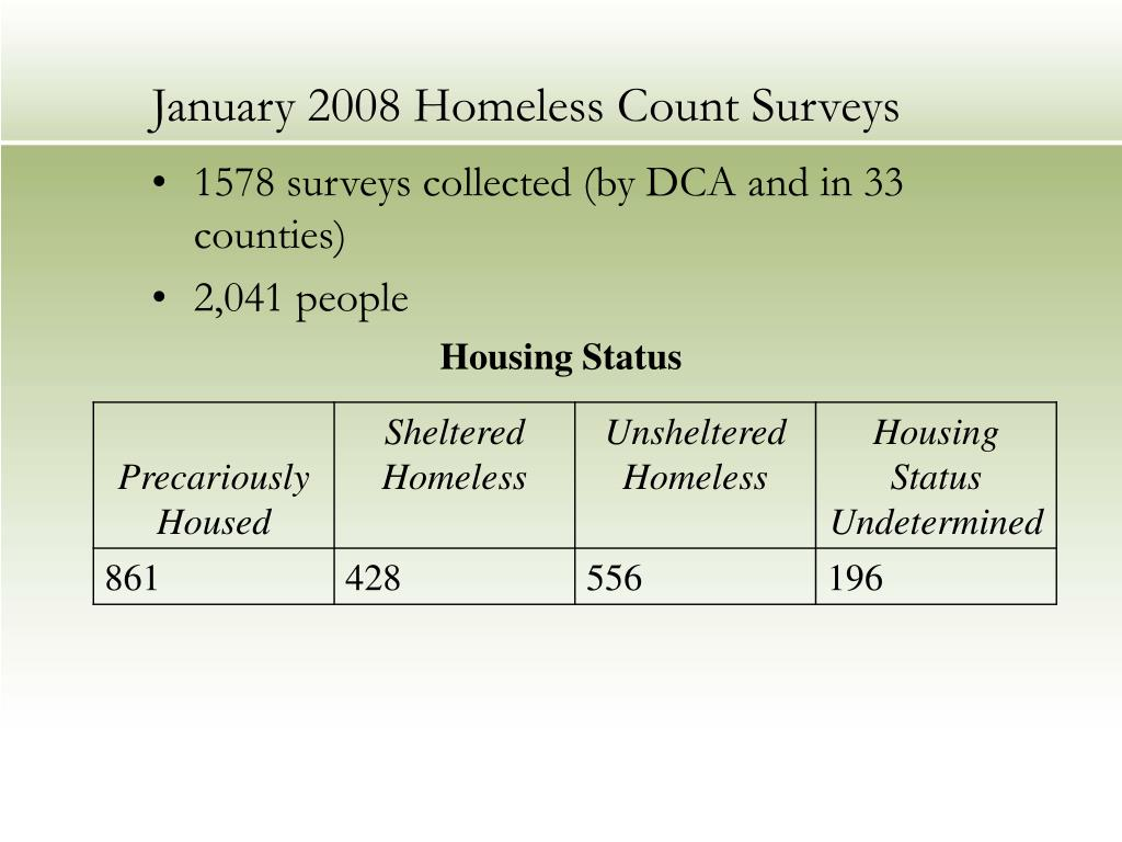 January 2008 Homeless Count Surveys