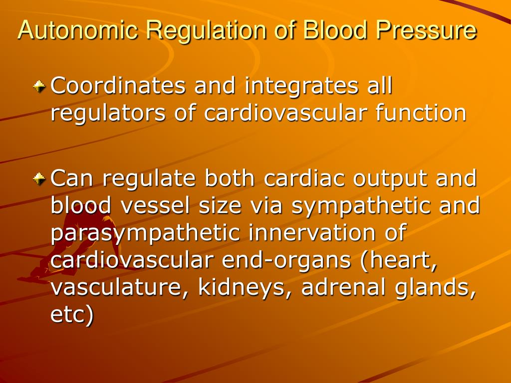 Autonomic Regulation of Blood Pressure