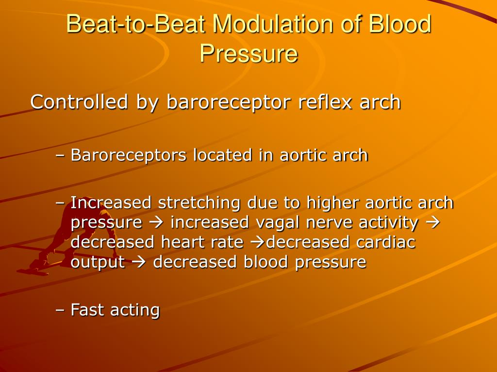 Beat-to-Beat Modulation of Blood Pressure
