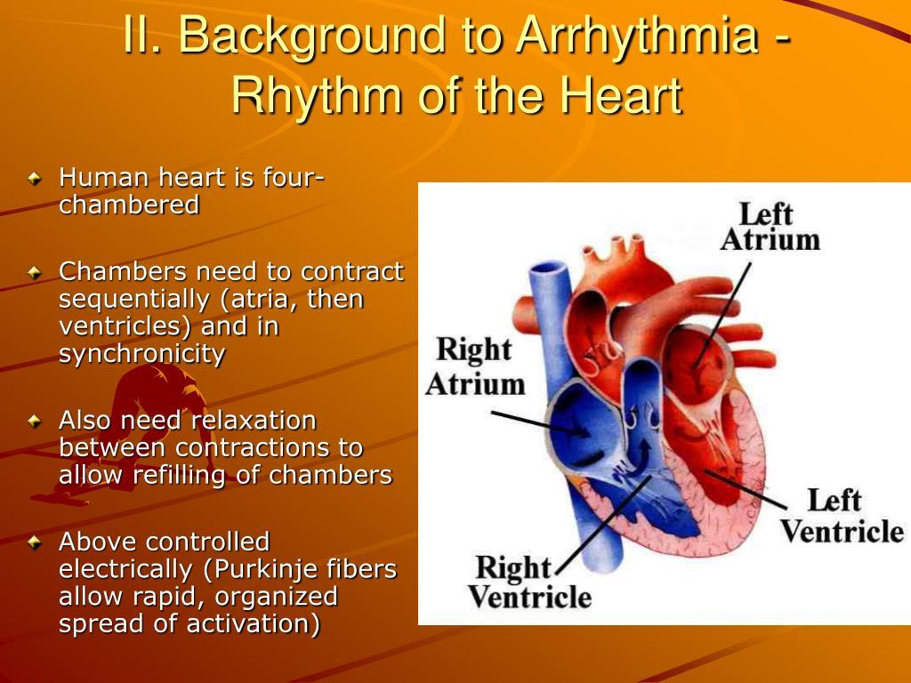 II. Background to Arrhythmia - Rhythm of the Heart