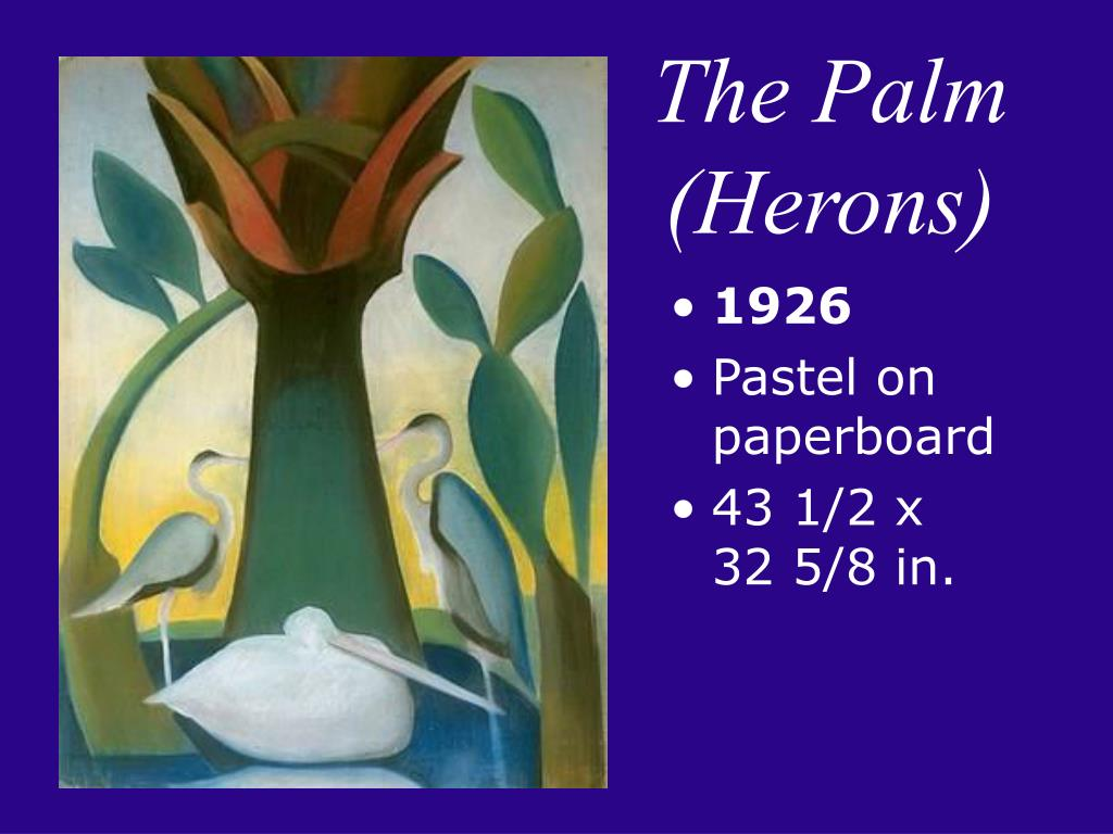 The Palm (Herons)