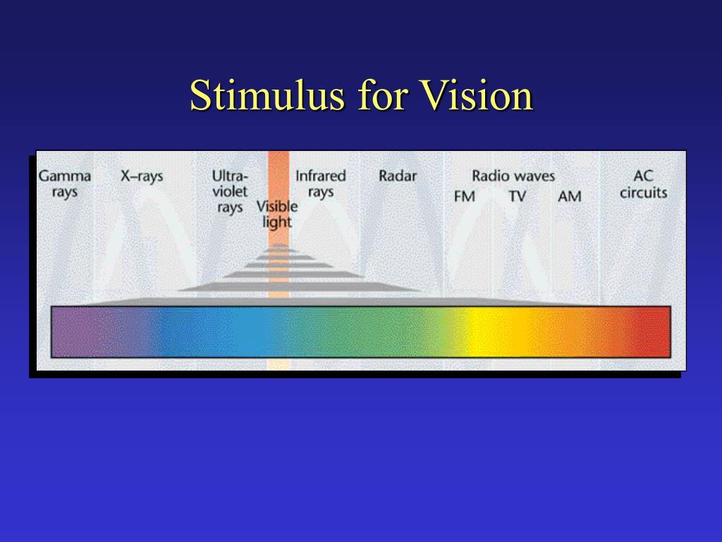 Stimulus for Vision