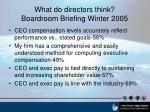 what do directors think boardroom briefing winter 2005