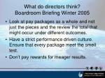 what do directors think boardroom briefing winter 200510