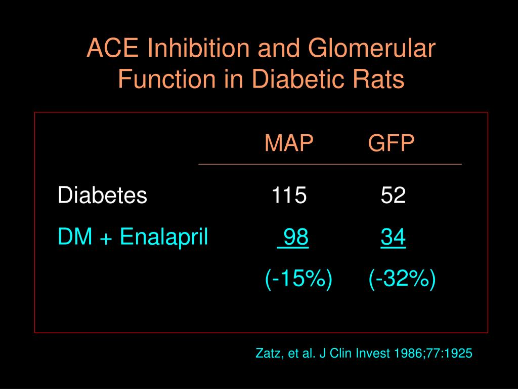 ACE Inhibition and Glomerular Function in Diabetic Rats