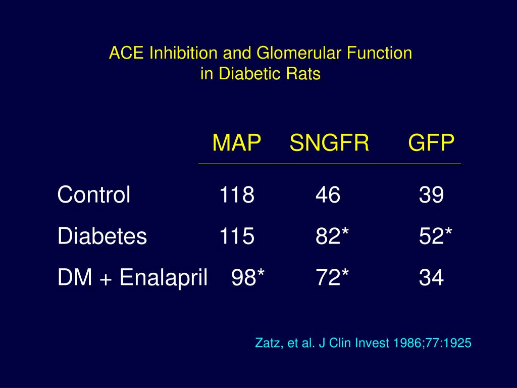 ACE Inhibition and Glomerular Function
