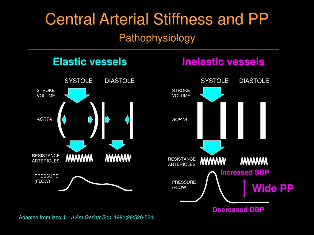 Central Arterial Stiffness and PP