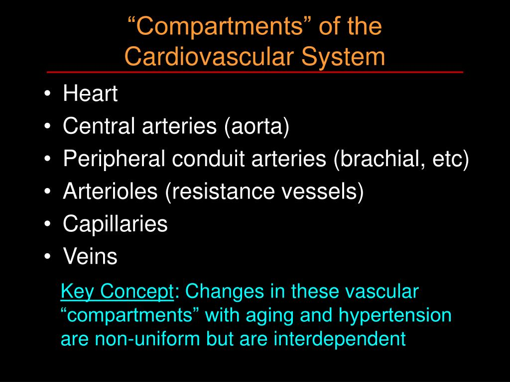 """""""Compartments"""" of the Cardiovascular System"""