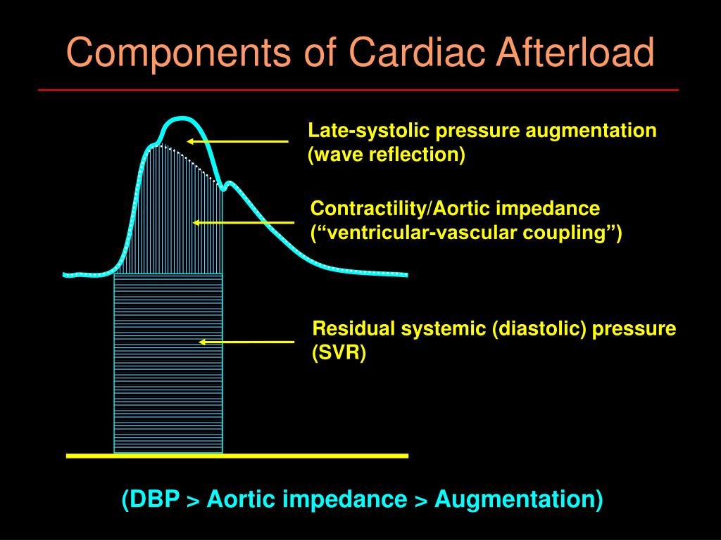 Components of Cardiac Afterload