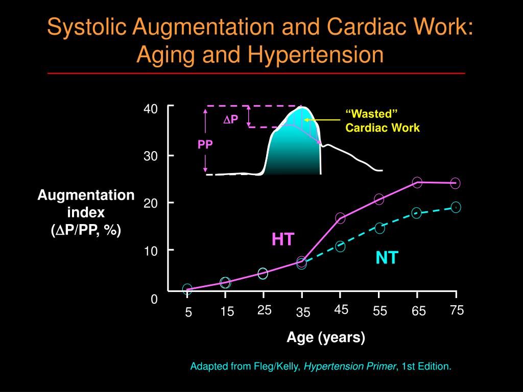 Systolic Augmentation and Cardiac Work: Aging and Hypertension