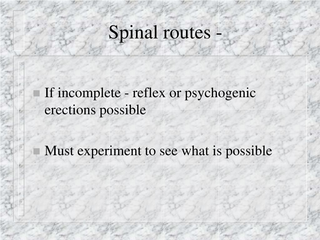 Spinal routes -