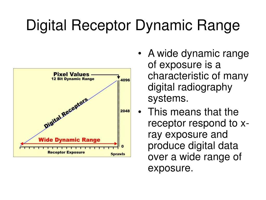 Digital Receptor Dynamic Range