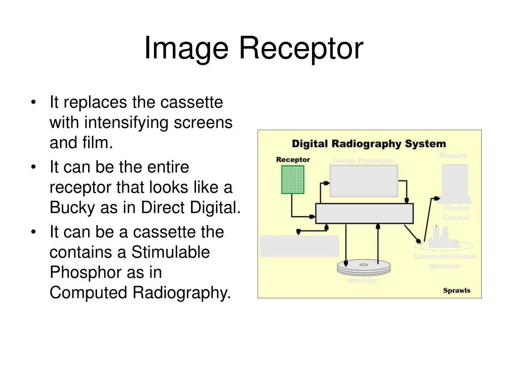 Image Receptor