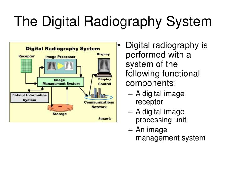 The digital radiography system l.jpg
