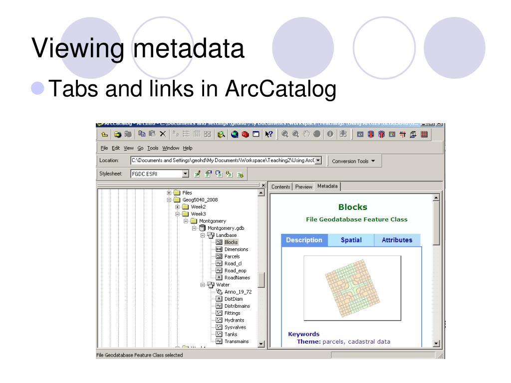 Viewing metadata
