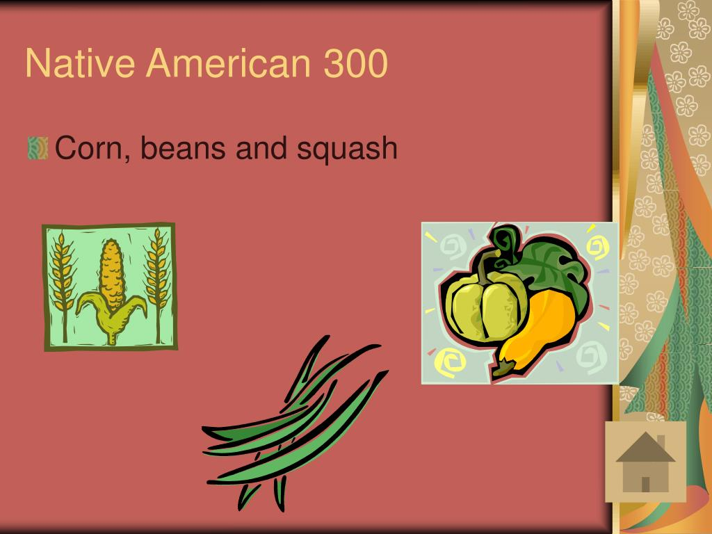Native American 300