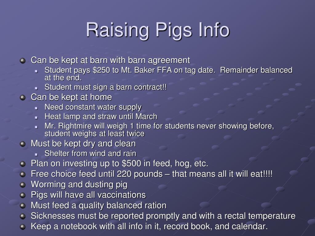 Raising Pigs Info