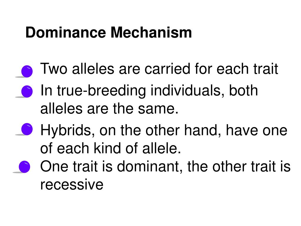Dominance Mechanism