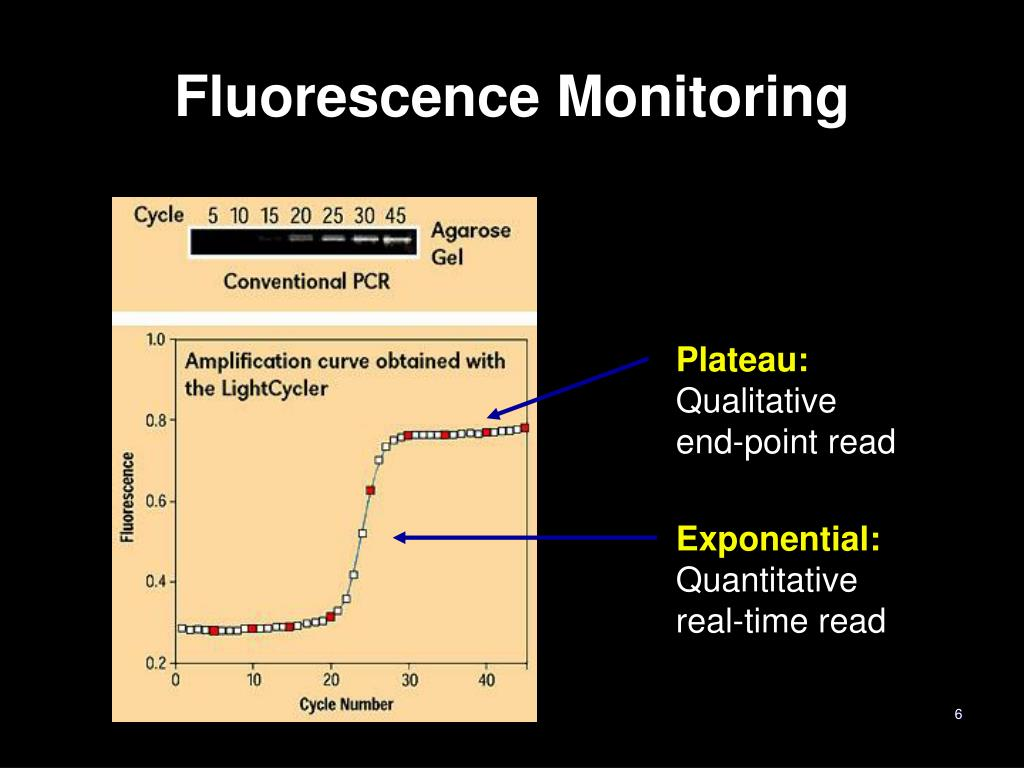 Fluorescence Monitoring