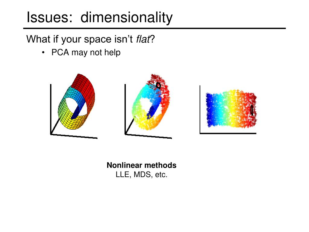Issues:  dimensionality