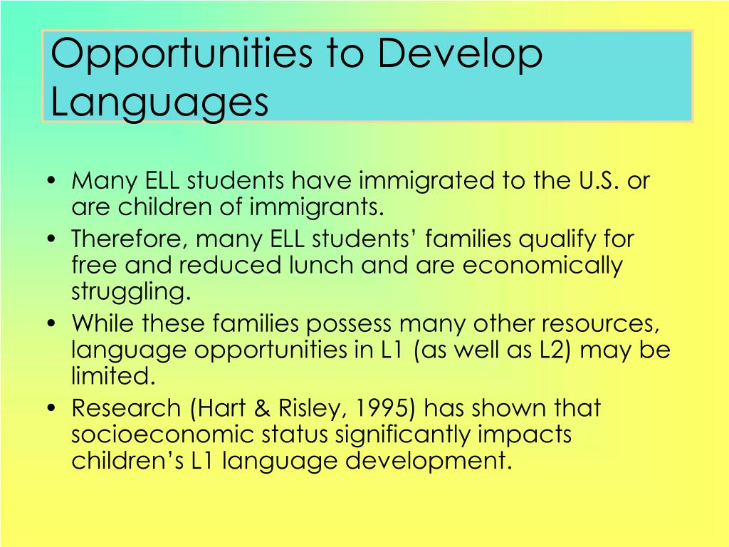 Opportunities to Develop Languages