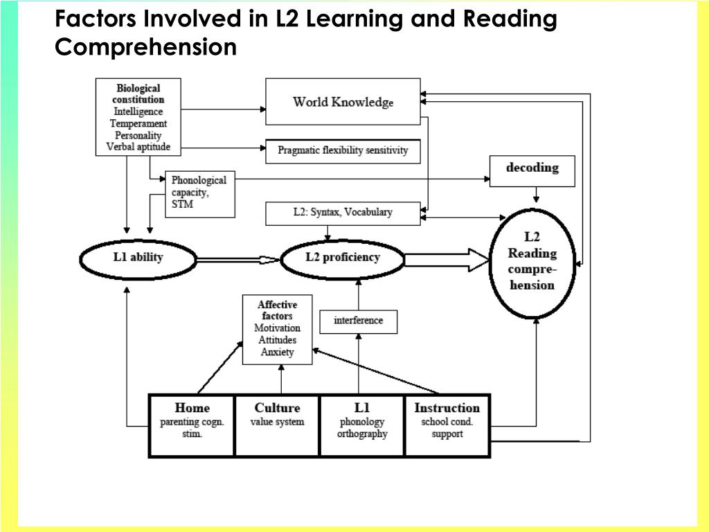 Factors Involved in L2 Learning and Reading Comprehension