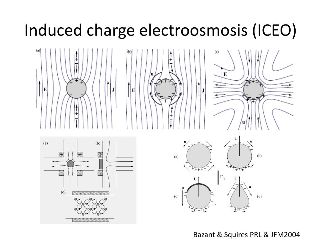 Induced charge
