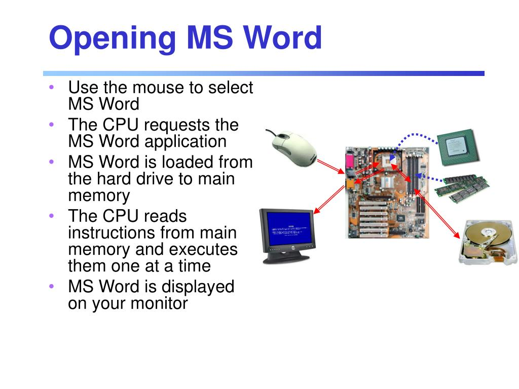 Opening MS Word