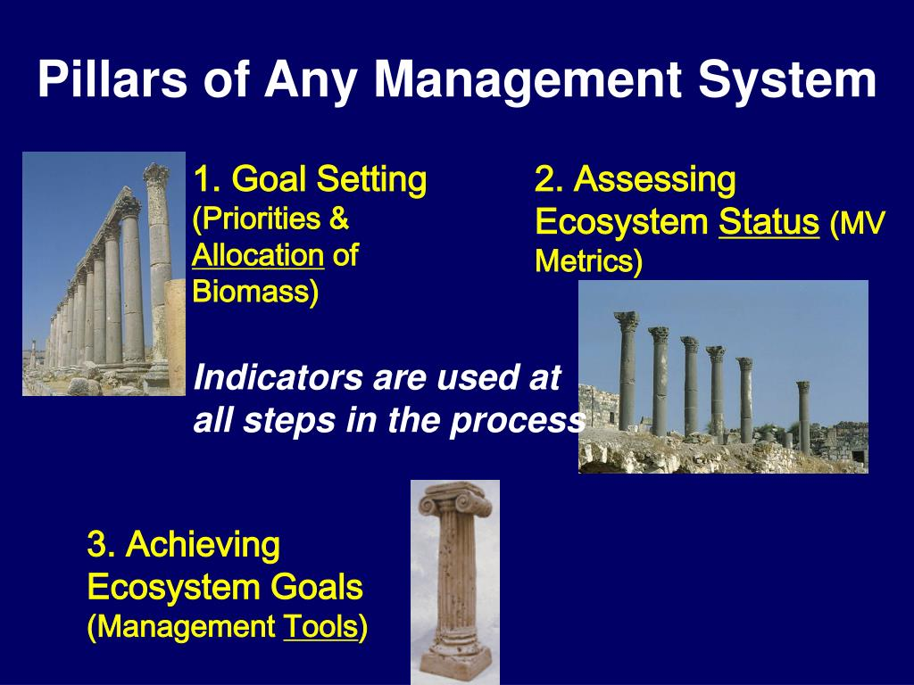 Pillars of Any Management System
