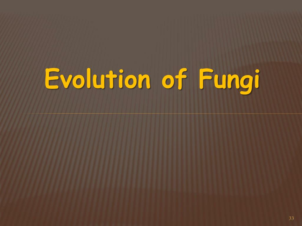 Evolution of Fungi