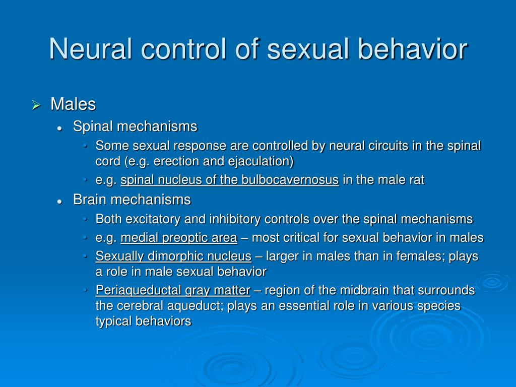 Neural control of sexual behavior
