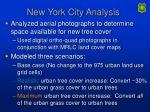 new york city analysis
