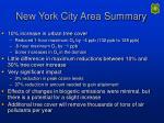 new york city area summary