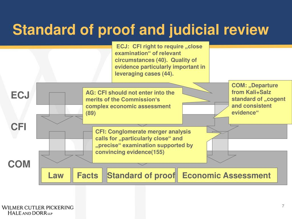 Standard of proof and judicial review