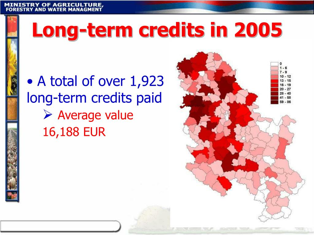Long-term credits in 2005