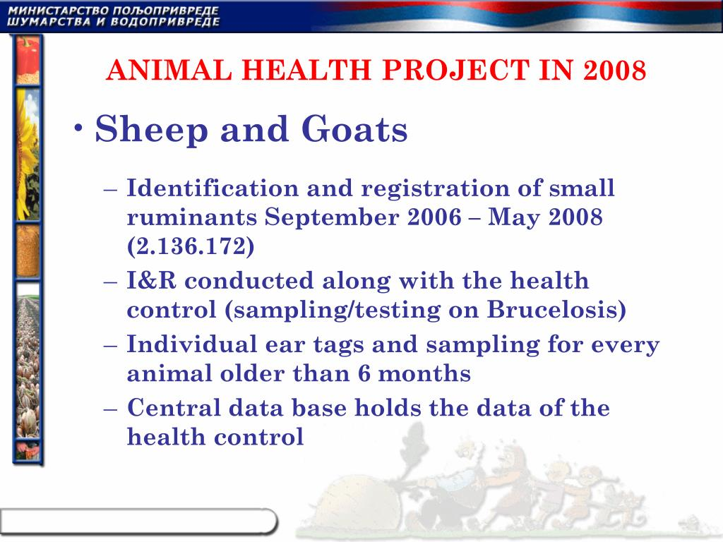 ANIMAL HEALTH PROJECT IN 2008