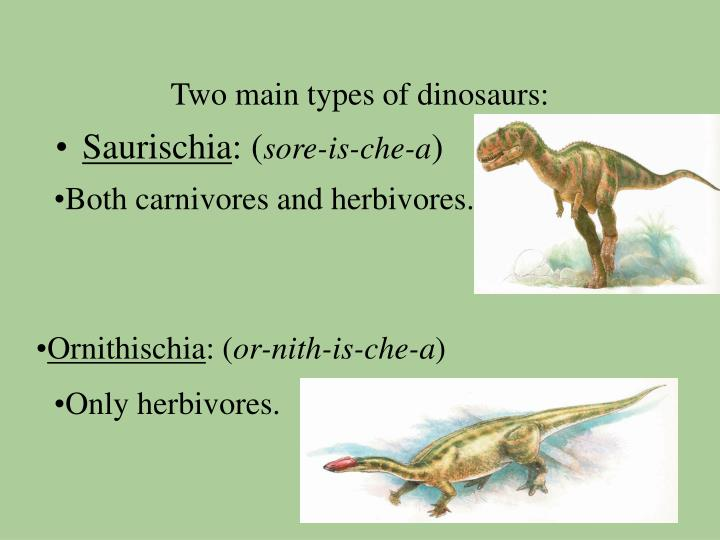 Two main types of dinosaurs:
