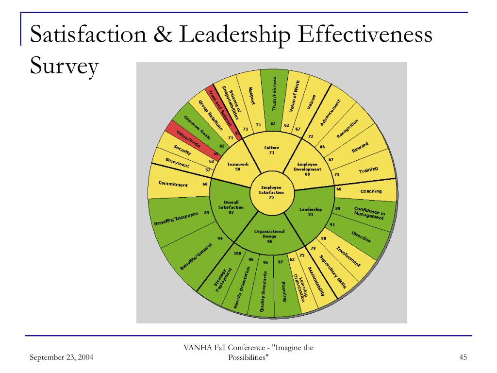Satisfaction & Leadership Effectiveness Survey