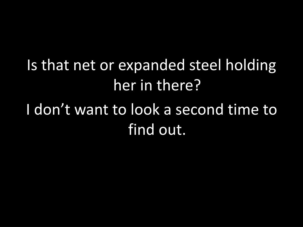 Is that net or expanded steel holding her in there?