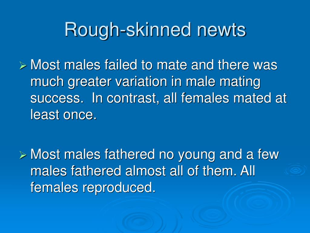 Rough-skinned newts