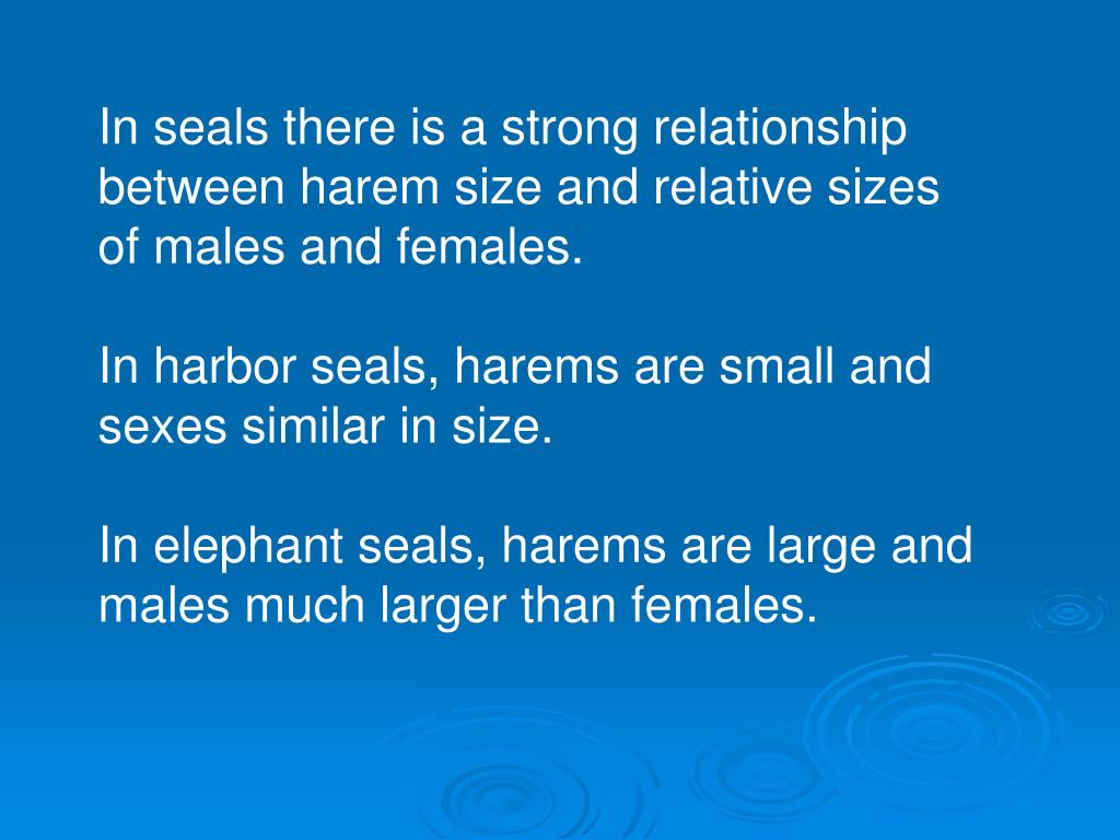 In seals there is a strong relationship