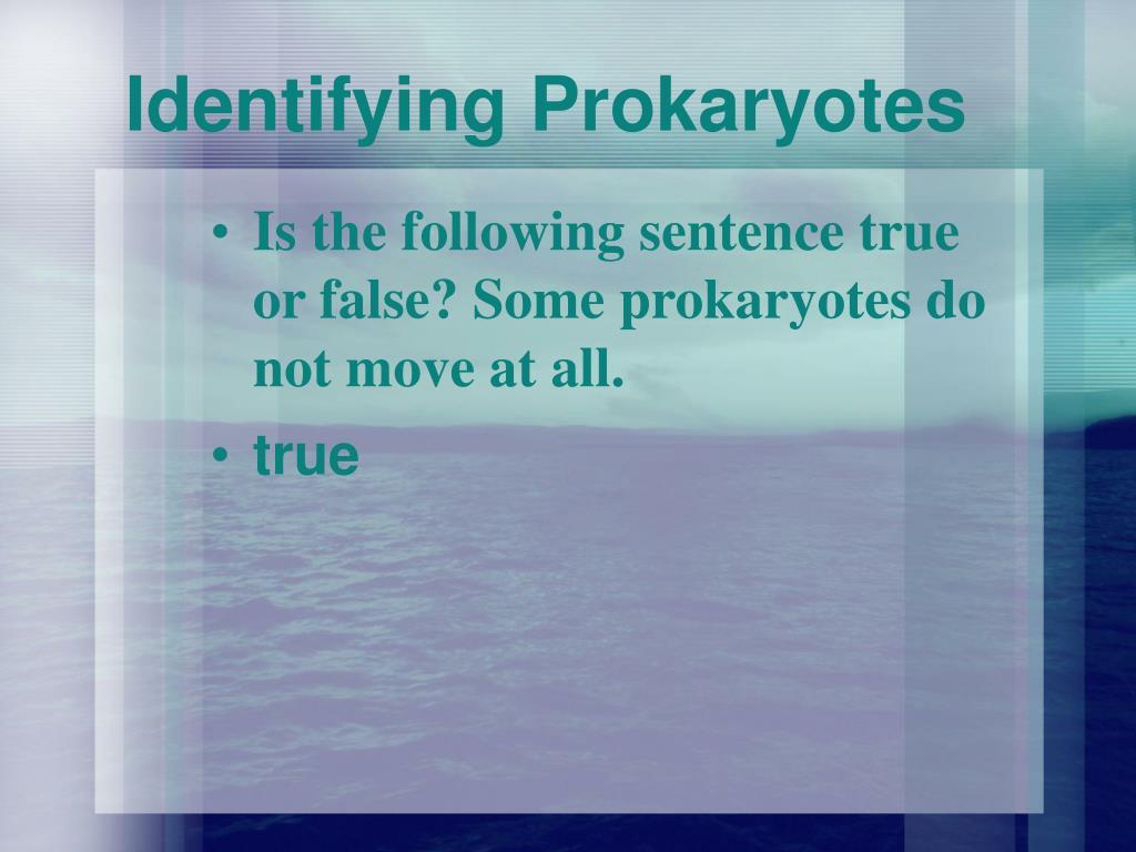 Identifying Prokaryotes