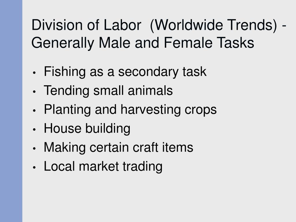 Division of Labor  (Worldwide Trends) - Generally Male and Female Tasks